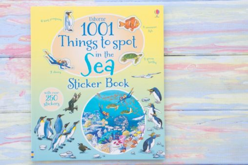 Usborne 1001 Things to Spot Sticker Book